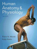 Human Anatomy   Physiology PDF
