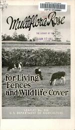 Multiflora Rose for Living Fences and Wildlife Cover