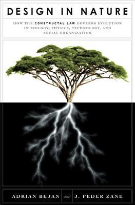 Design in Nature PDF
