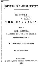 Sketches in Natural History: History of the Mammalia ...