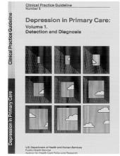 Depression in Primary Care: Detection and Diagnosi