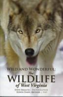 Wild and Wonderful PDF