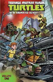 Teenage Mutant Ninja Turtles: New Animated Adventures, Vol. 1