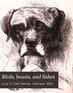 Birds  beasts and fishes PDF