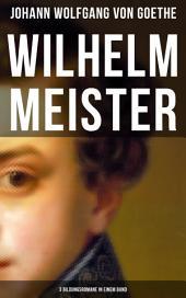 Wilhelm Meister (3 Bildungsromane in einem Band): Künstlerromane: Die Leidenschaft des Schauspiels, Die Liebe zu einer vergebten Frau & Die Pilgerreise