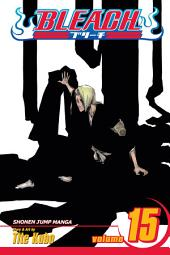 Bleach, Vol. 15: Beginning of the Death of Tomorrow
