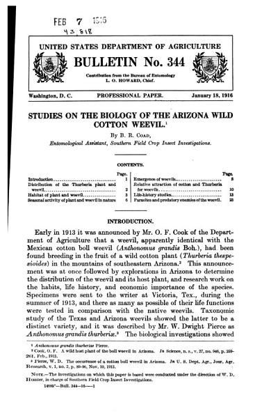 Studies on the Biology of the Arizona Wild Cotton Weevil