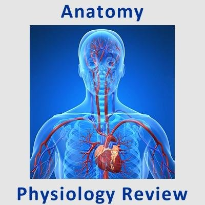 Human Anatomy & Physiology Review for Premed Students