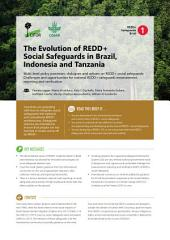 The Evolution of REDD+ Social Safeguards in Brazil, Indonesia and Tanzania: Multi-level policy processes, dialogues and actions on REDD+ social safeguards: Challenges and opportunities for national REDD+ safeguards measurement, reporting and verification.