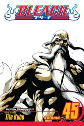 Bleach, Vol. 45: The Burnout Inferno