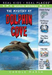 The Mystery at Dolphin Cove