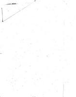 The New York Mirror PDF