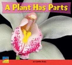 A Plant Has Parts PDF