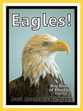 Just Eagles! vol. 1: Big Book of Photographs & Eagle Birds Pictures