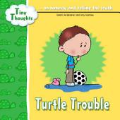 Turtle Trouble: Learning Honesty