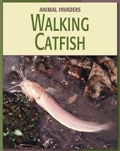 Walking Catfish