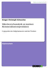 Mikrobereichsanalytik an marinen Biomineralisationsprodukten: Copepoden des Südpolarmeeres und der Nordsee