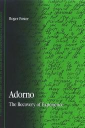 Adorno: The Recovery of Experience