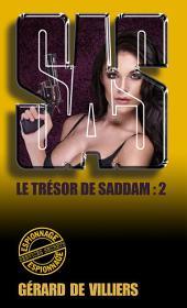 SAS 164 Le trésor de Saddam: Volume2