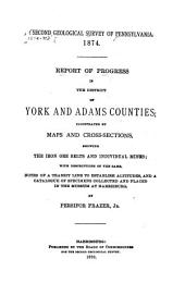 Report of Progress in the District of York and Adams Counties: Geological sections across York County