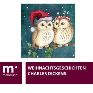 Weihnachtsgeschichten PDF