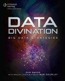 Data Divination PDF