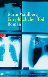 Ein plötzlicher Tod: Roman