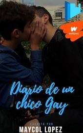 Diario De Un Adolescente Gay: Historia Gay