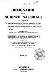 Dizionario delle scienze naturali nel quale si tratta metodicamente dei differenti esseri della natura, ... accompagnato da una biografia de' piu celebri naturalisti, opera utile ai medici, agli agricoltori, ai mercanti, agli artisti, ai manifattori, ...: 20:
