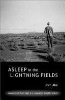 Asleep in the Lightning Fields PDF