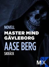 Master Mind Gävleborg