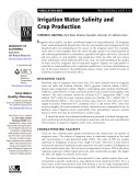 Irrigation Water Salinity and Crop Production