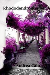 Rhododendronhagen