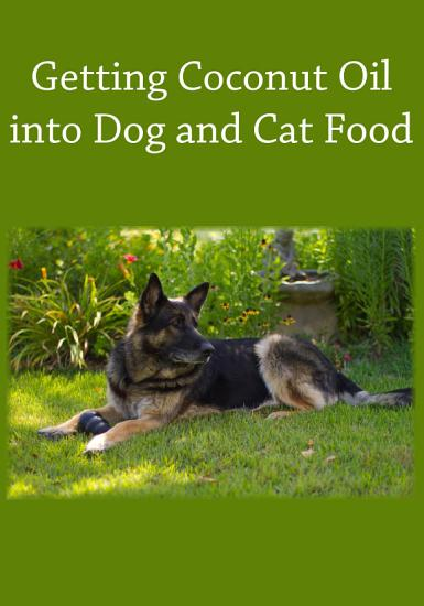Getting Coconut Oil into Dog and Cat Food PDF