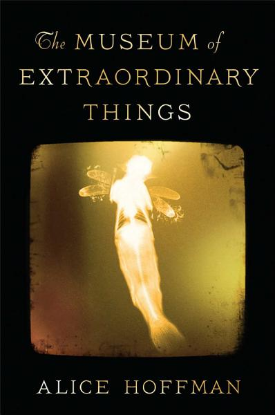 Download The Museum of Extraordinary Things Book