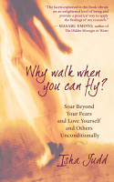 Why Walk When You Can Fly PDF