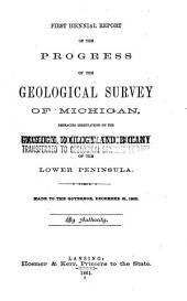 Biennial Report of the Progress of the Geological Survey of Michigan: Embracing Observations on the Geology, Zoology and Botany of the Lower Peninsula