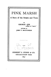 Pink Marsh: A Story of the Streets and Town