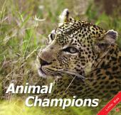 Animal Champions: Little Kiss57