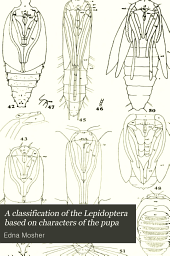 A classification of the Lepidoptera based on characters of the pupa