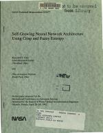 Self-growing Neural Network Architecture Using Crisp and Fuzzy Entropy