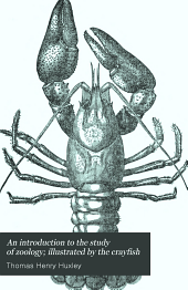 An introduction to the study of zoology; illustrated by the crayfish