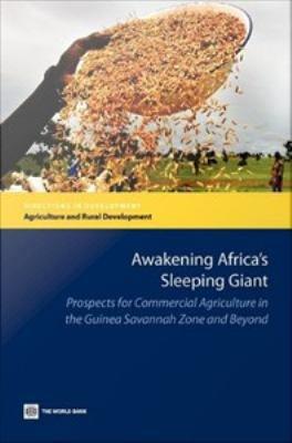 Awakening Africa s Sleeping Giant