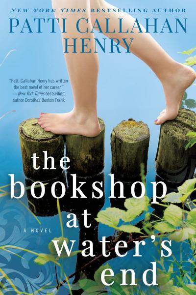 Download The Bookshop at Water s End Book