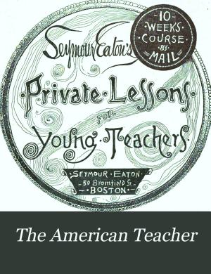 The American Teacher PDF