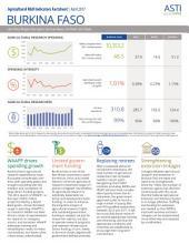 Burkina Faso: Agricultural R&D Indicators Factsheet