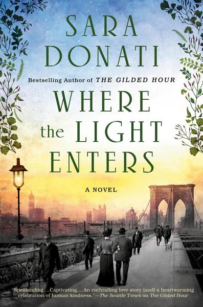 Download Where the Light Enters Book