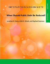When Should Public Debt Be Reduced?