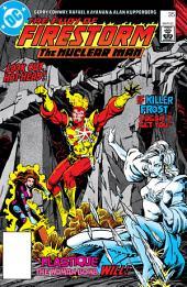 The Fury of Firestorm (1982-) #35