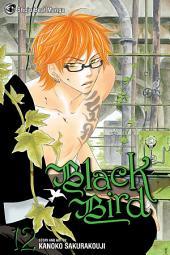 Black Bird: Volume 12